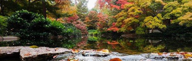 Fort-worth-botanic-gardens.png