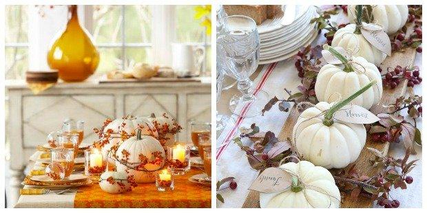 white pumpkins.jpg.jpe
