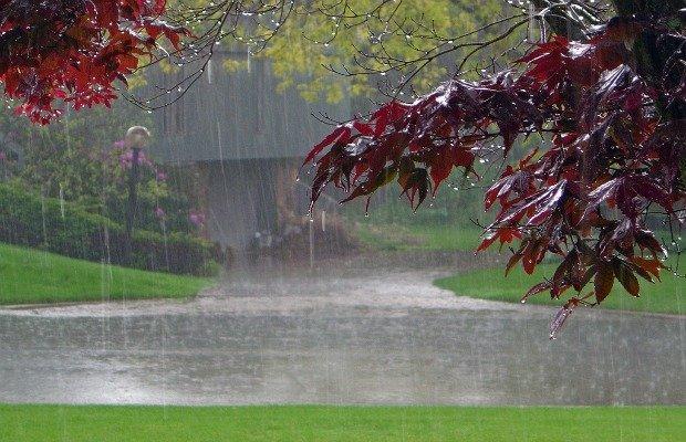 Rain-Falling-Background.jpg.jpe