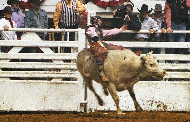 Fort Worth Stock Show & Rodeo.jpg.jpe