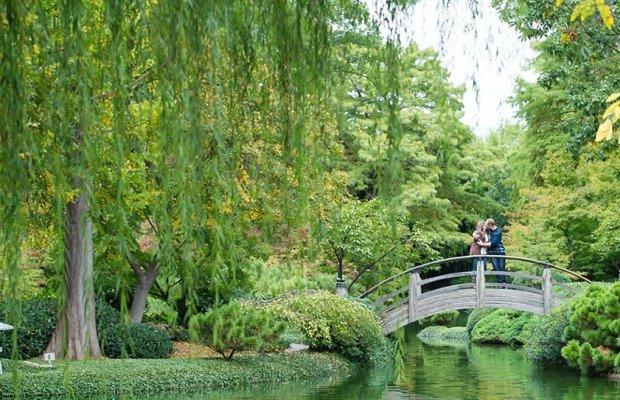 Japanese Gardens.jpg.jpe