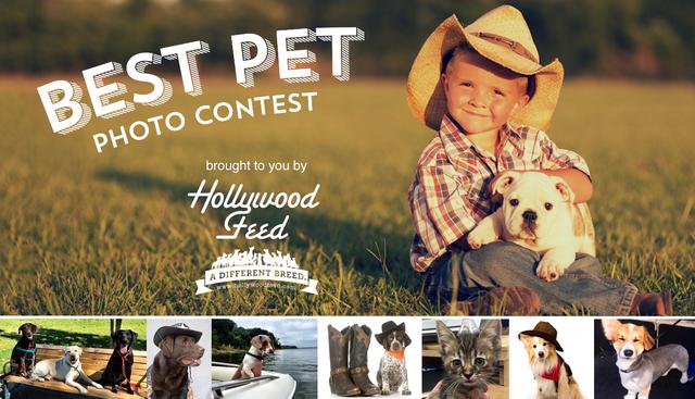 best-pet-contest.png
