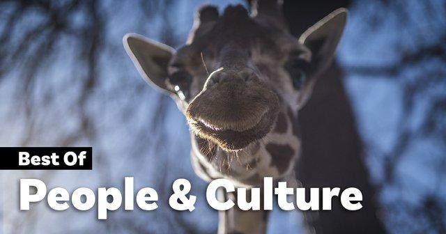 peopleandculture.jpg.jpe