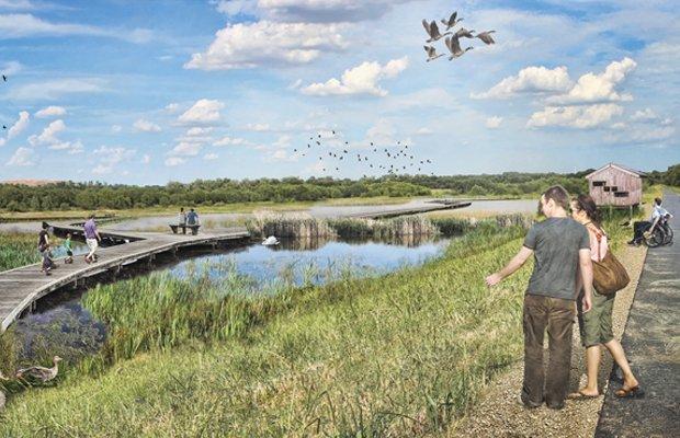 Wetland Habitat Preservation Render