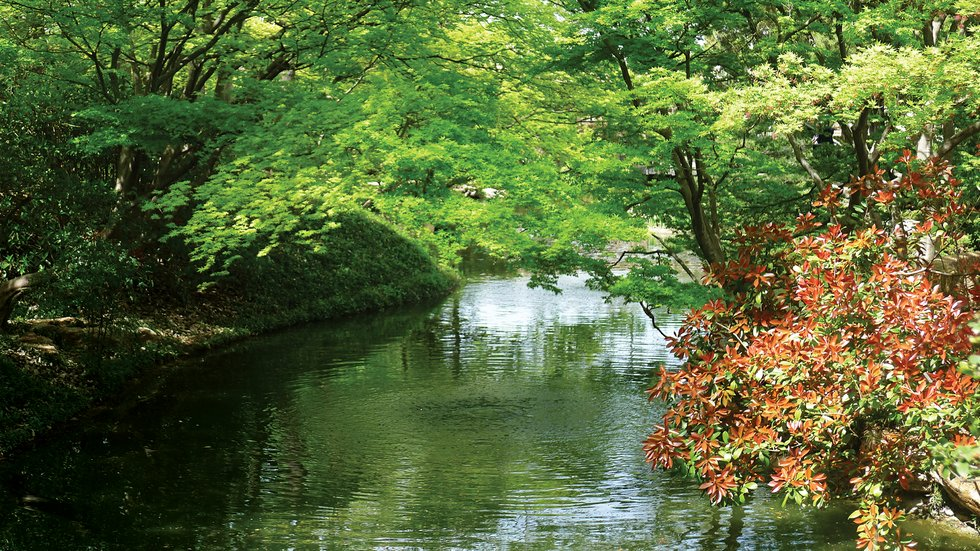 The Botanic Garden, Fort Worth
