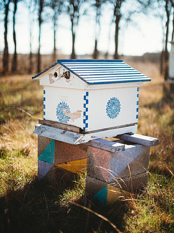 bees verical.jpg