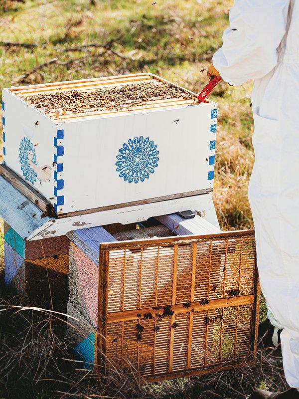 bees verical 1.jpg