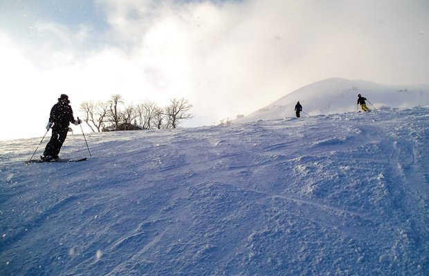 skiing-nisekoT.jpg.jpe