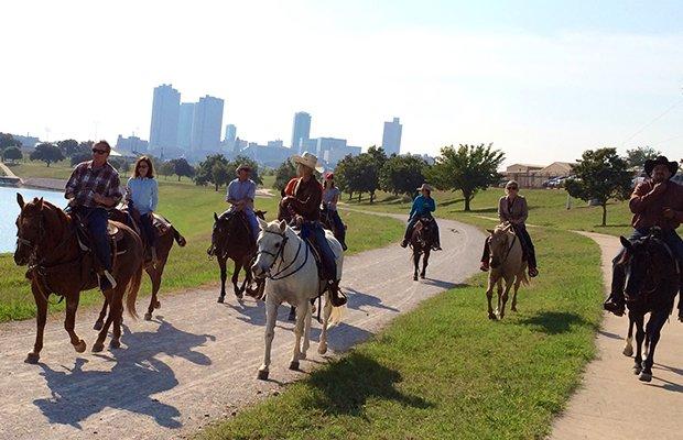horses-trinity-trails.jpg.jpe