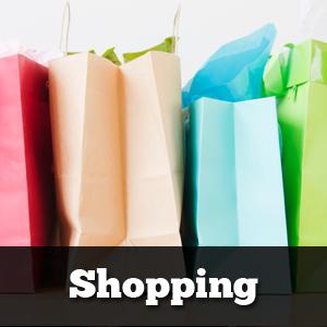 MainCategory_Shopping.png