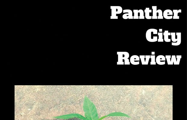 PantherCityReview 2016 cover.jpg.jpe