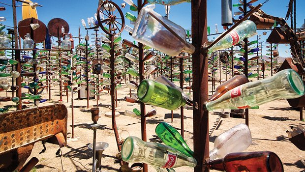 66-bottletree.jpg.jpe