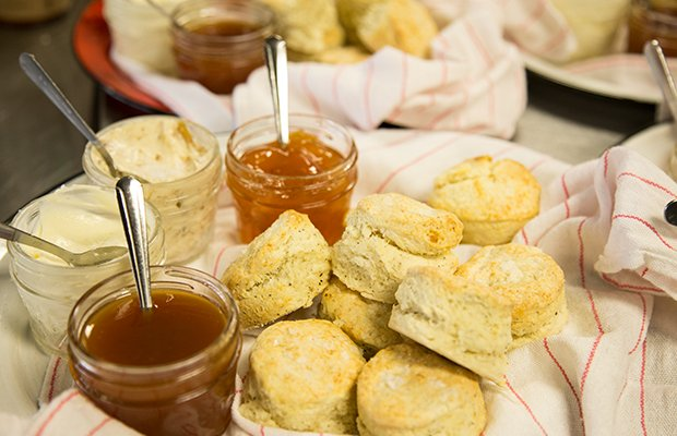 biscuit-4.jpg.jpe