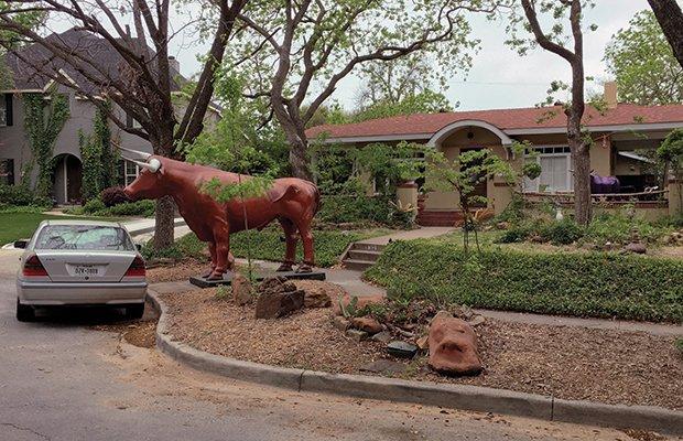 Hidden FW-Longhorn Sculptures01.jpg.jpe
