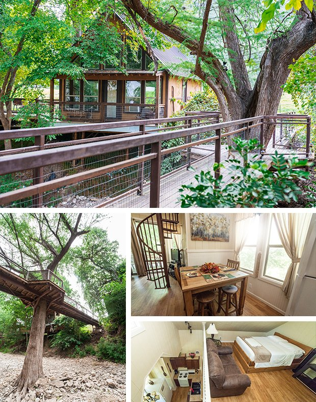 treehouse.jpg.jpe