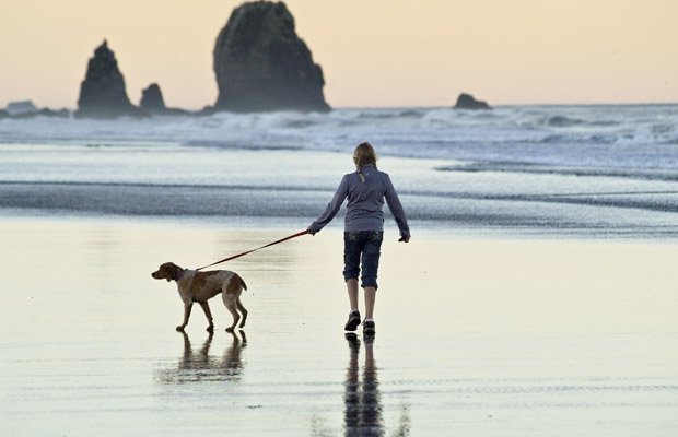 walkdogbeach.jpg.jpe