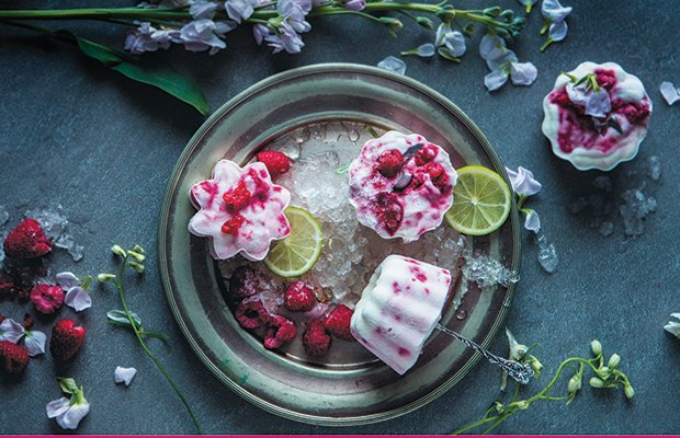 Raspberry-YogurtIcePops.jpg.jpe