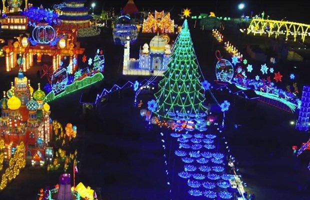 Holiday Lights.jpg.jpe