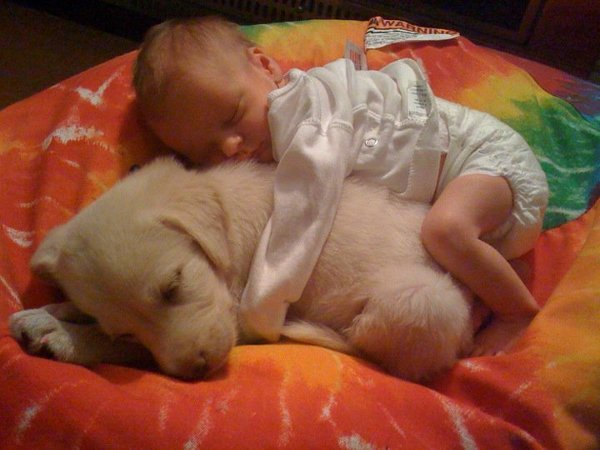 baby-sleeping-on-puppy.jpg.jpe