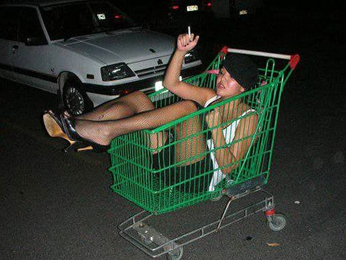 shoppingcarted.jpg.jpe