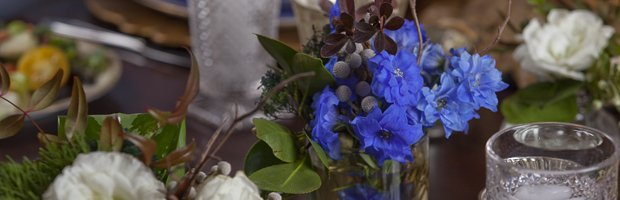 Flowere_3660topper.jpg.jpe